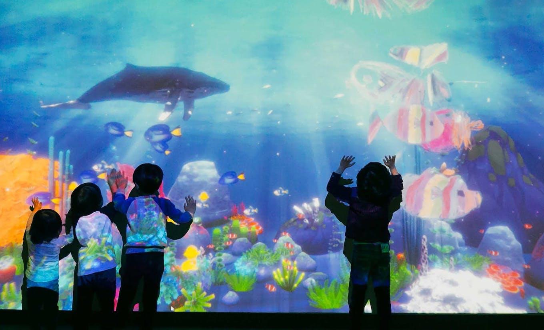 子どもたちのタッチに連動して動く知育プログラム「Curio Screen」